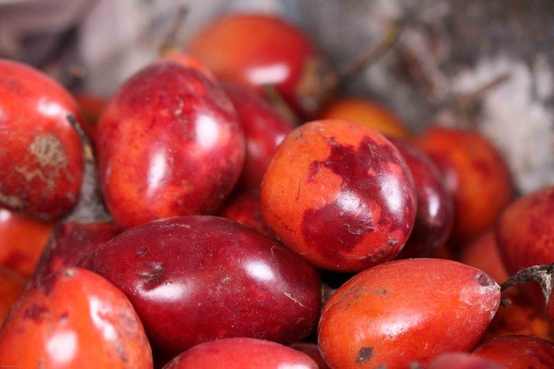 Tree Tomatos at the market