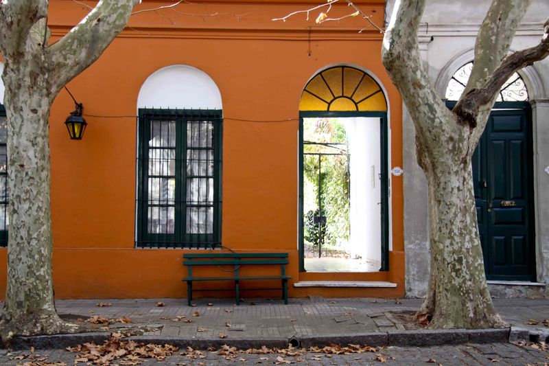 tree lined streets of Colonia, Uruguay