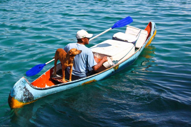Ilha Grande - drink salesman in canoe