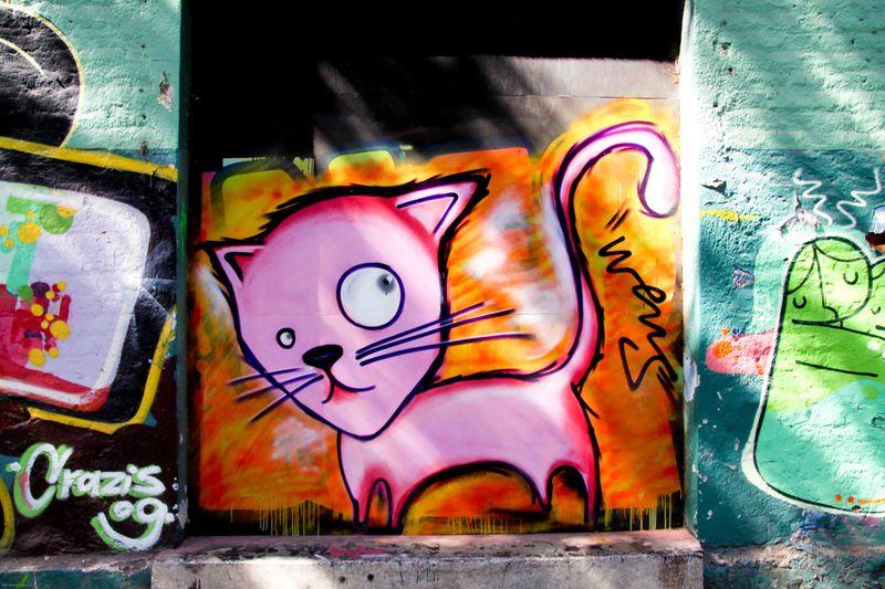 Santiago's street art