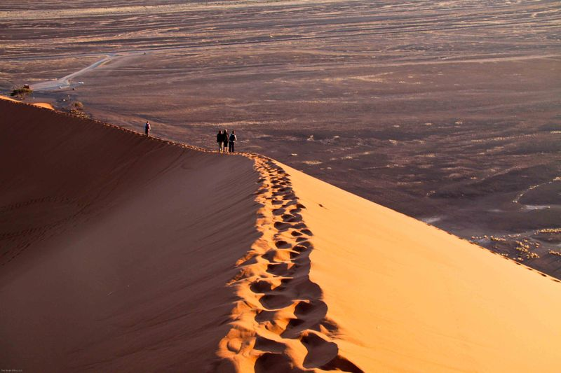 Our track up Dune 45. Namibia