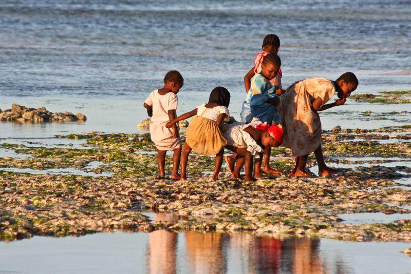 Nungwi, Zanzibar - children searching the shore