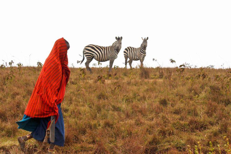 Ngorongoro Crater, Tanzania - Masai and Zebras