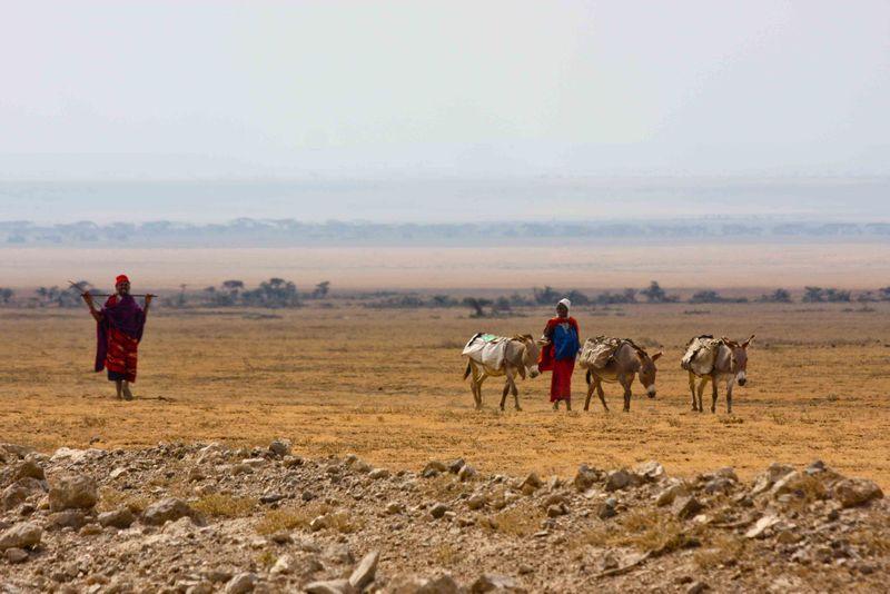 Ngorongoro Crater, Tanzania - Masai with donkeys