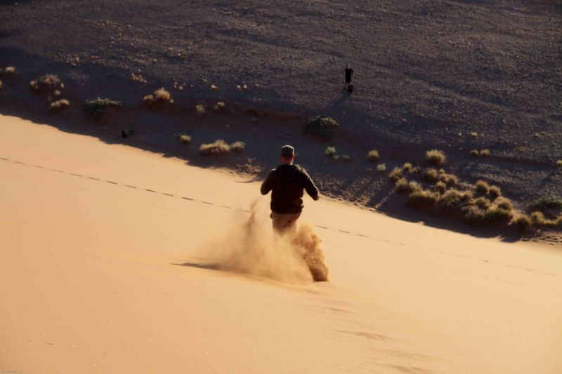 Beau running down the dunes