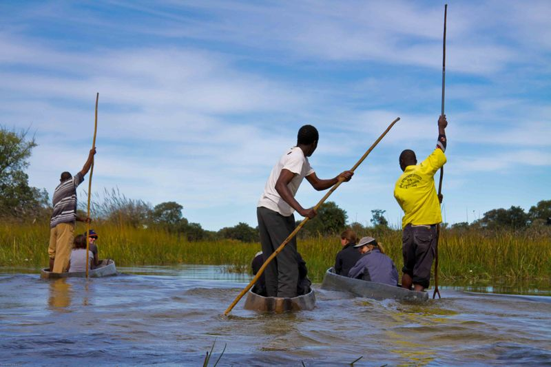Okavango Delta - Polers