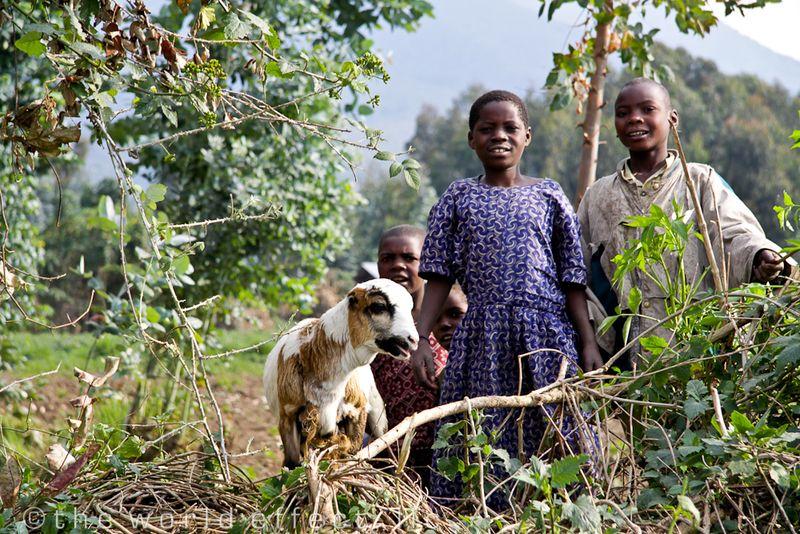 local kids in Volcanoes National Park, Rwanda