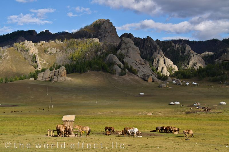 Mongolia, Landscape with gers and horses