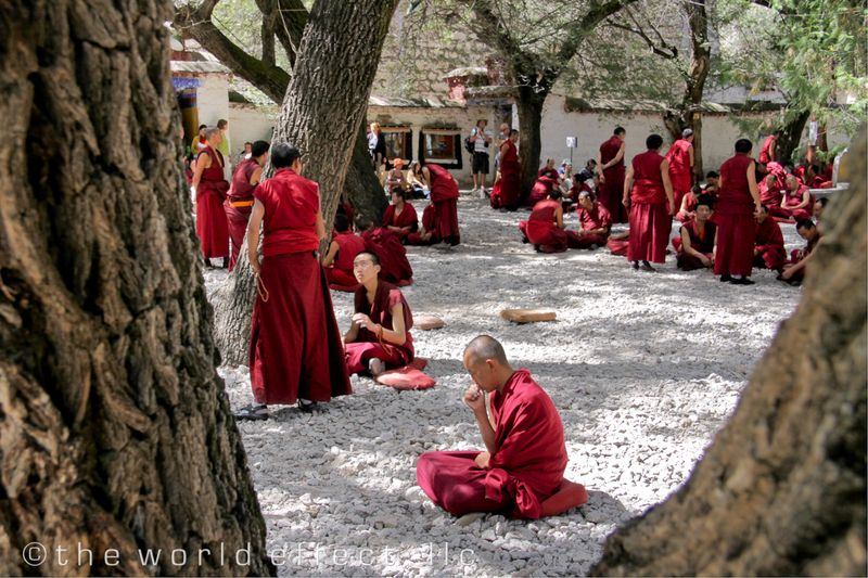 The debate. Sera Monastery. Lhasa, TIbet