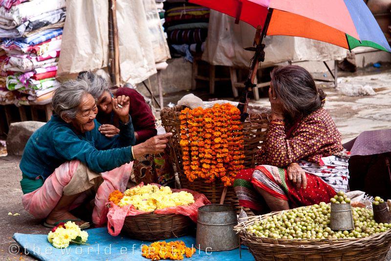 Women selling flowers. Kathmandu, Nepal