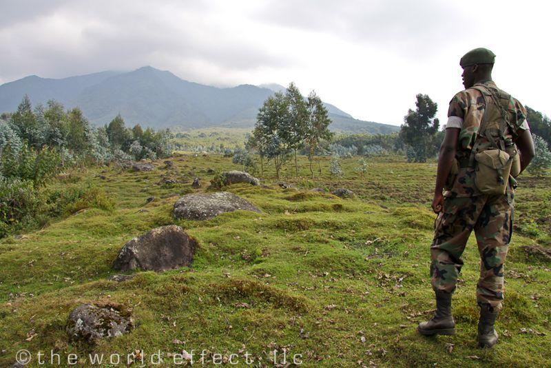 Armed guard in Volcanoes National Park, Rwanda