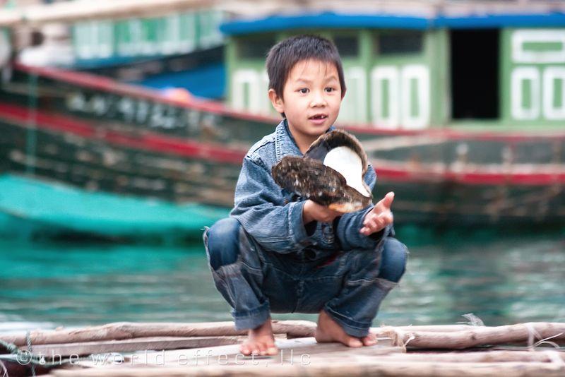 Fishing Village. Ha Long Bay, Vietnam