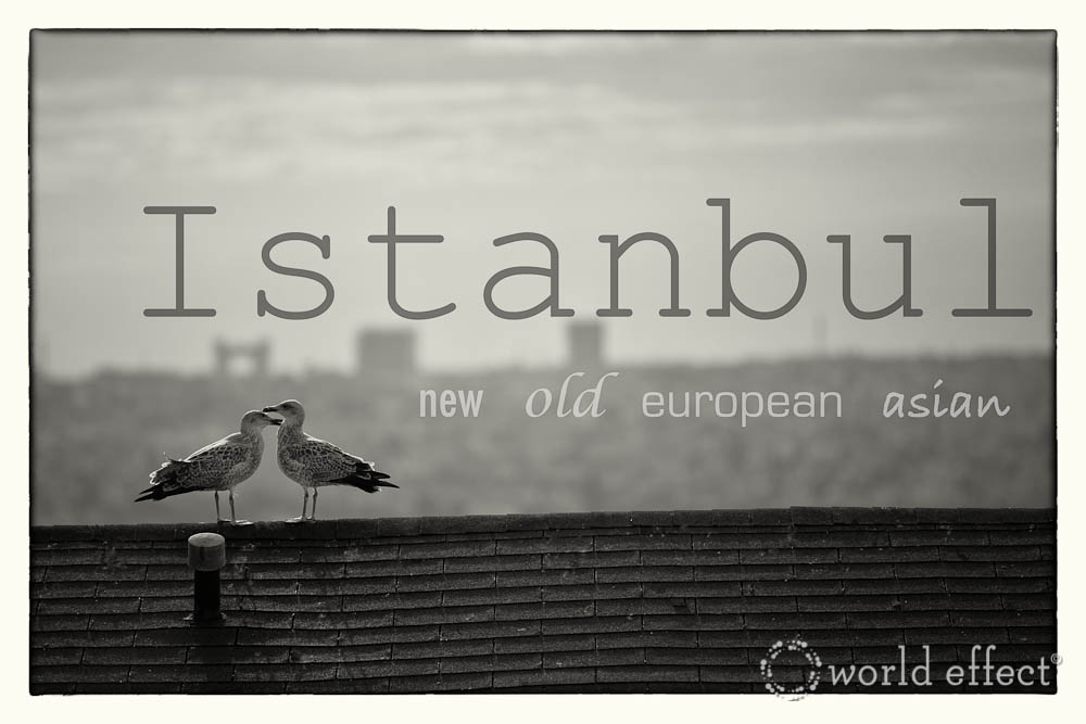 Istanbul old new european asian